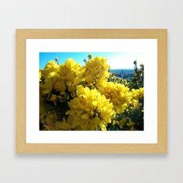 Sharp and Scottish  Framed Art Print