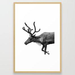 Animal Photography | Reindeer Minimalism | Antlers Christmas | Rudolf Framed Art Print