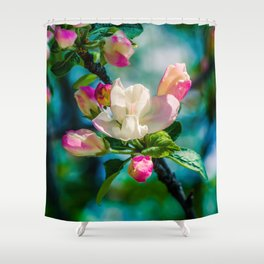 Crabapple flower and buds Shower Curtain