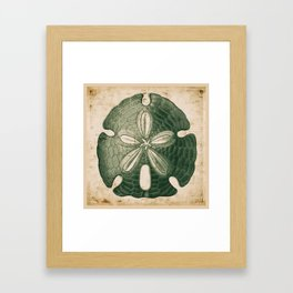 The Big Green Sand Dollar Framed Art Print