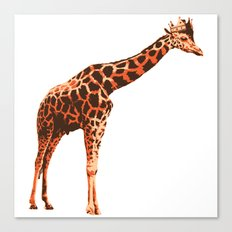 King Giraffe Canvas Print