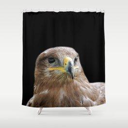 Buzzard on Black Shower Curtain