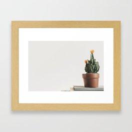 Close up of a small cactus Framed Art Print