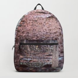 a warm place Backpack
