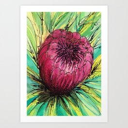 Queen Protea Art Print