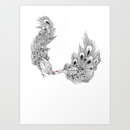 Peacock III Art Print