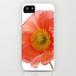 Iceland poppy iPhone Case