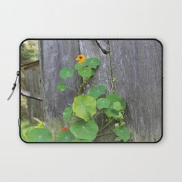 The Garden Wall Laptop Sleeve