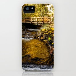 Water Of Life - Landscape Art iPhone Case