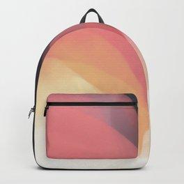 Silk Backpack