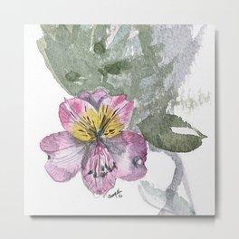 Floral Preservation Metal Print