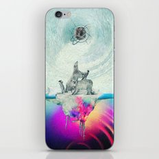 Polar Inversion iPhone & iPod Skin