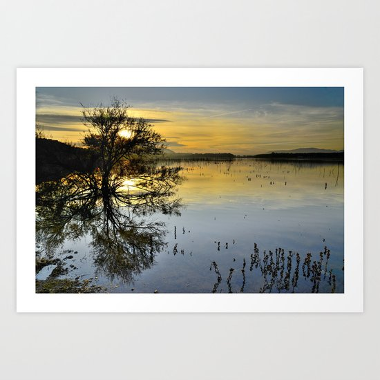 The sun and the water tree Art Print