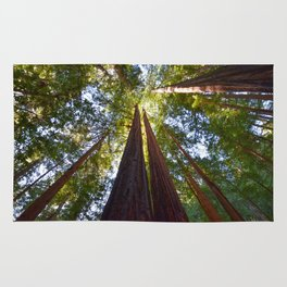 California Redwoods Rug