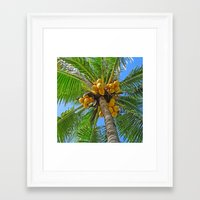coconut wishes Framed Art Prints featuring COCONUT by Lartte