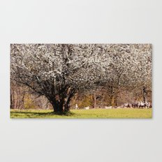 The sheep-tree Canvas Print