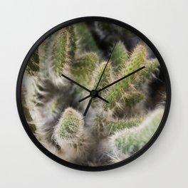 Hairy Cactus 1 Wall Clock