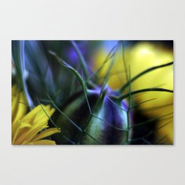 Sowing The Seeds Of Love Canvas Print