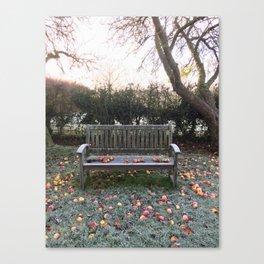 Frosty apples Canvas Print