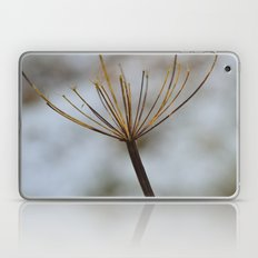 Cow Parsley In the Snow Laptop & iPad Skin