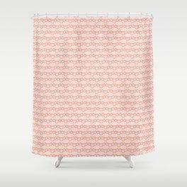 laces (2) Shower Curtain