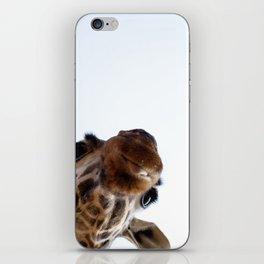 Playful Giraffe iPhone Skin