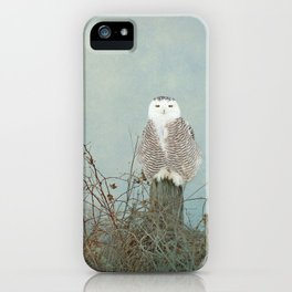 You Are Too Beautiful iPhone Case