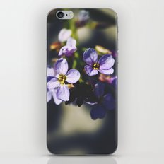 Your Heart's Desire iPhone & iPod Skin