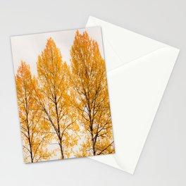 Aspen Trees #decor #buyart #society6 Stationery Cards