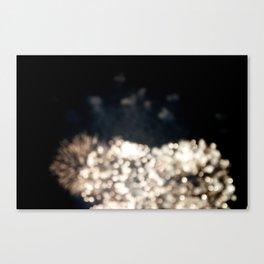 fireworks IV Canvas Print