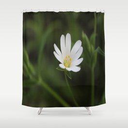 Seen But Not Heard Shower Curtain