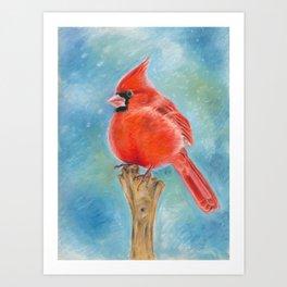 Red Cardinal Pastel Art Art Print