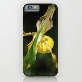 Camera Shy Lady Slipper iPhone Case