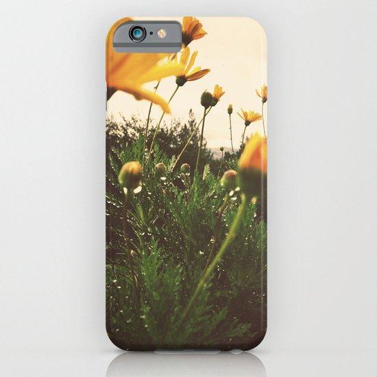 Post-Rain Yellows iPhone & iPod Case