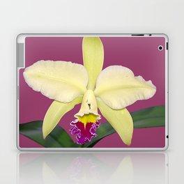 Stunning cream and magenta orchid flower Laptop & iPad Skin