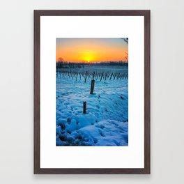 Sunset on snowy vineyard Framed Art Print