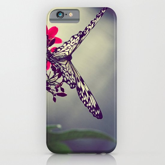 Butterfly in a Tree iPhone & iPod Case