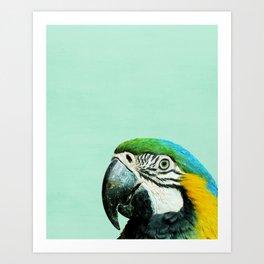 Parrot, Bird, Modern art, Tropical, Art, Minimal, Wall art Print Art Print