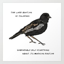 Lark Bunting – State Bird of Colorado Art Print