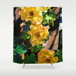 Rosy Sunrise Shower Curtain