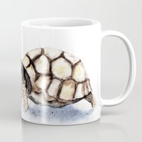 turtle Mugs featuring Turtle by Anna Shell