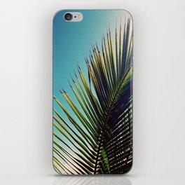Sunny Palm Tree iPhone Skin