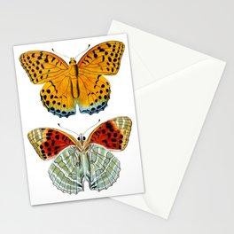 Butterflies (Argynnis Childreni) Stationery Cards