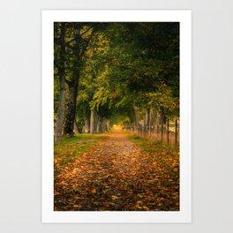 Autumn Alley Road Art Print