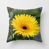 sunshine Throw Pillows featuring Sunshine  by IowaShots