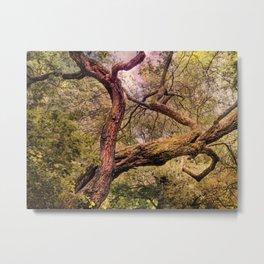Dancing tree Metal Print