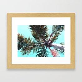 breezy palm Framed Art Print