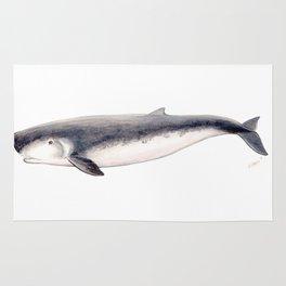 Pygmy sperm whale Rug