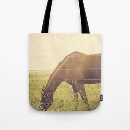 Texas Horse Grazing Tote Bag