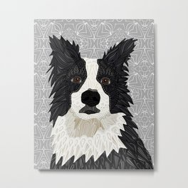 Beautiful Border Collie Metal Print